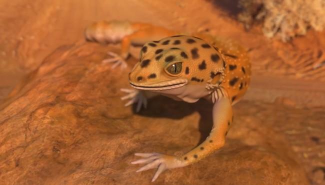 [IALU]Gecko